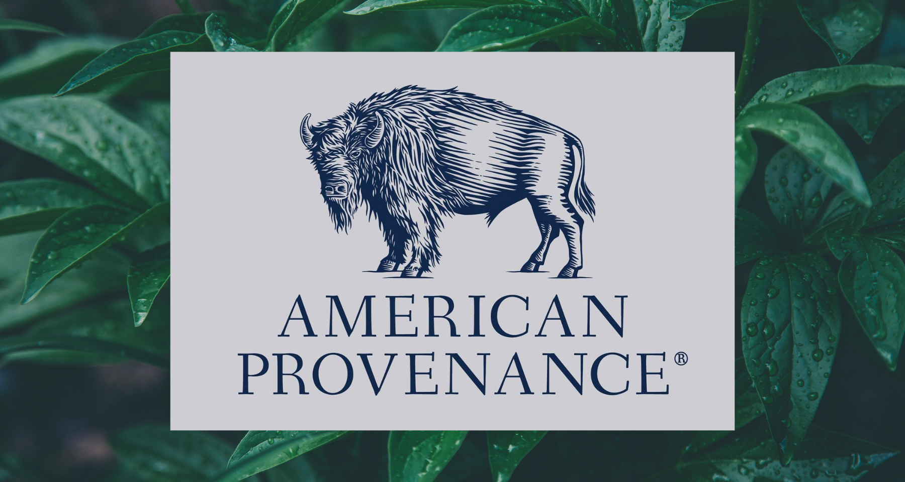 American Provenance Personal Care Products