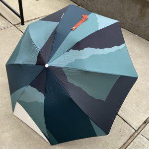 Certain Standard Small Umbrellas